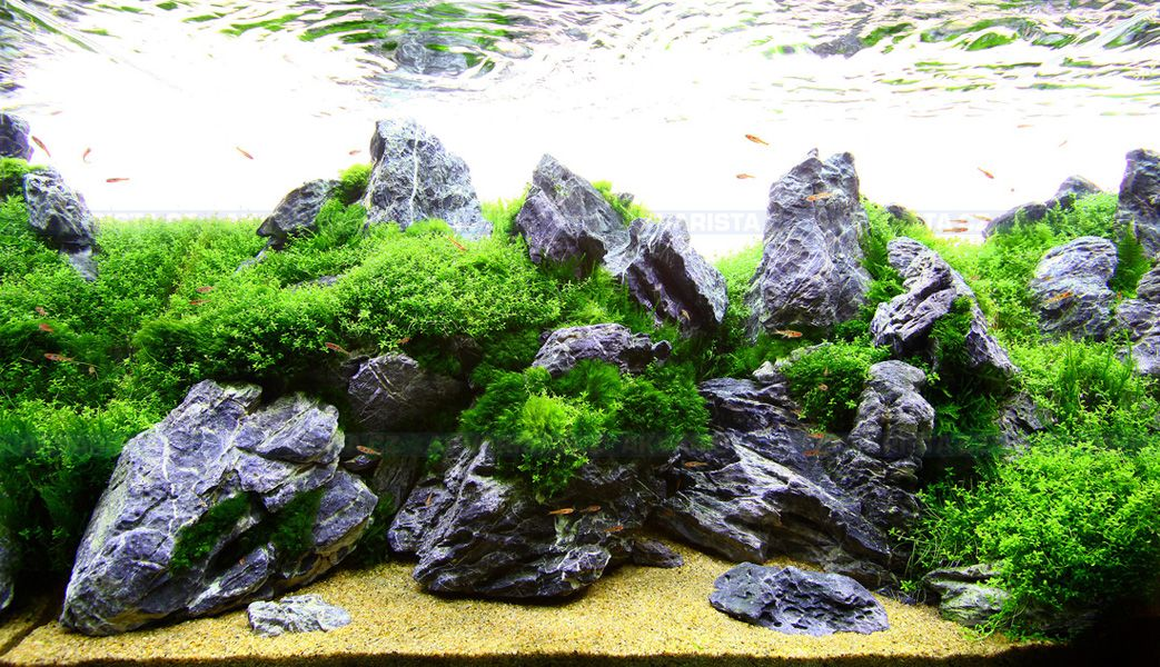 Mini Landscape Seiryu Stone Set 5kg Akvarista Cz