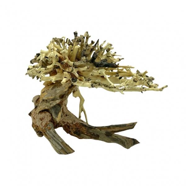 Bonsai Driftwood 15x12 cm (no. 13)