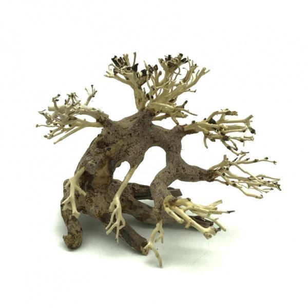 Bonsai Driftwood 15x12 cm (no. 7)