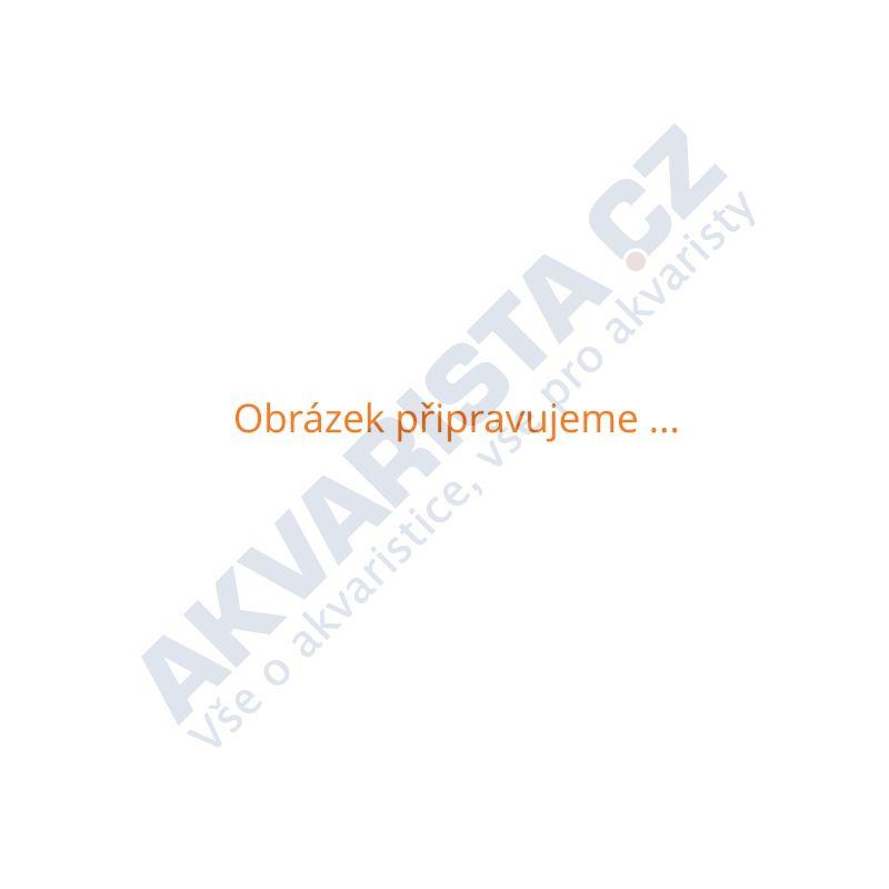 AKVARISTA.cz Nůžky prohnuté Wave 20 cm