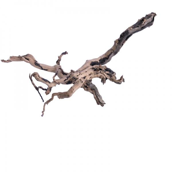 Red moor (Amano finger wood) akvarijní kořeny - NANO kořen (1ks)