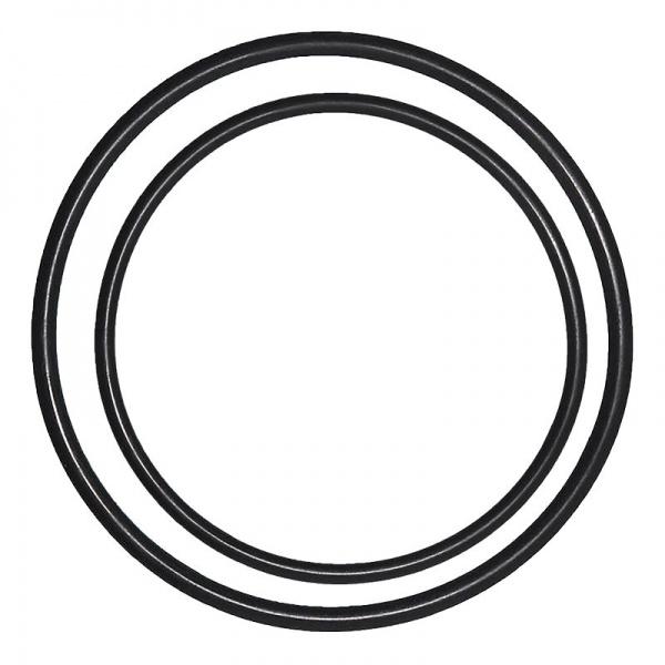 Náhradní těsnění 2ks pro Korpus filtru 10 průhledný s 1/4 šroubením a dvojitým těsněním
