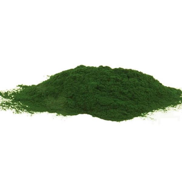 EasyFish Spirulina powder 500 g