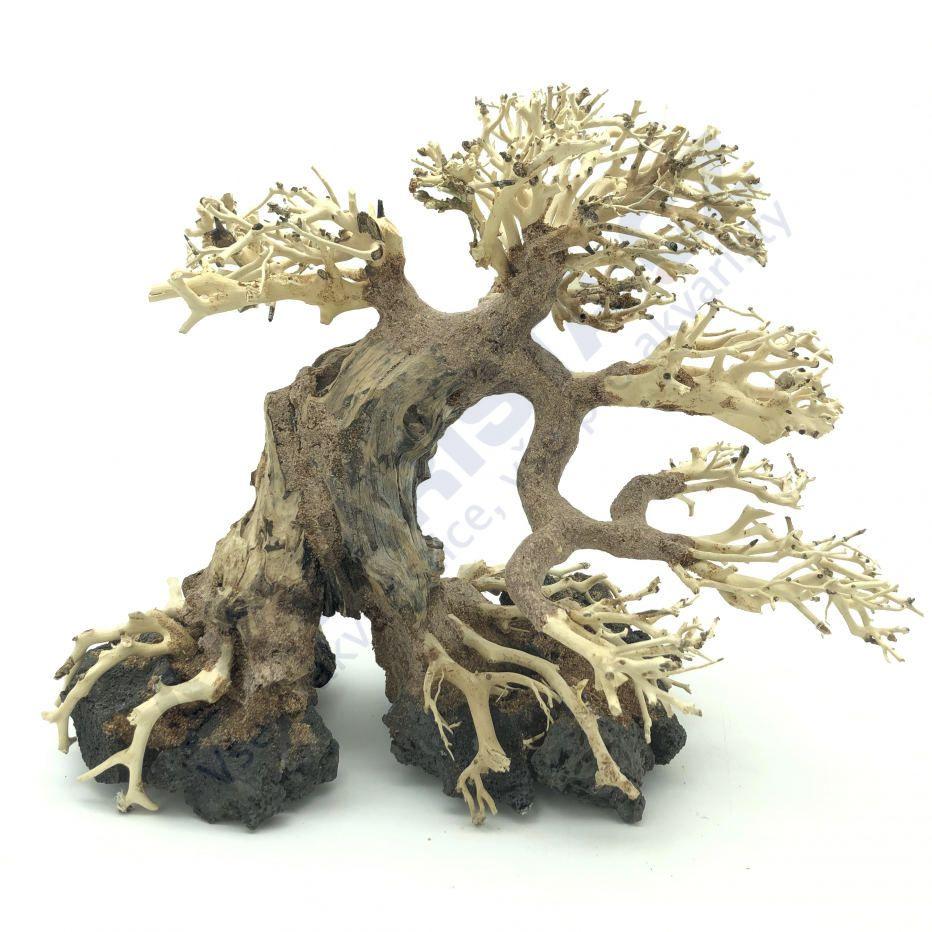 Bonsai Driftwood 30x25 cm (no. 28)