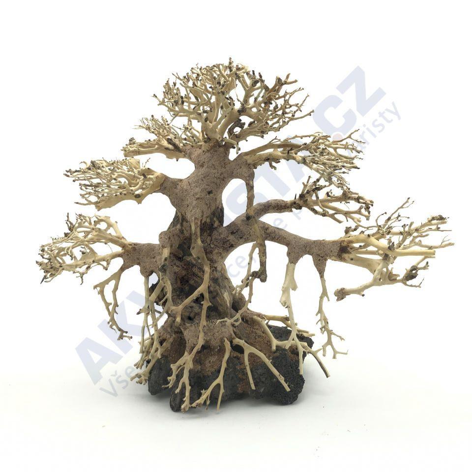 Bonsai Driftwood 40x30 cm (no. 32)
