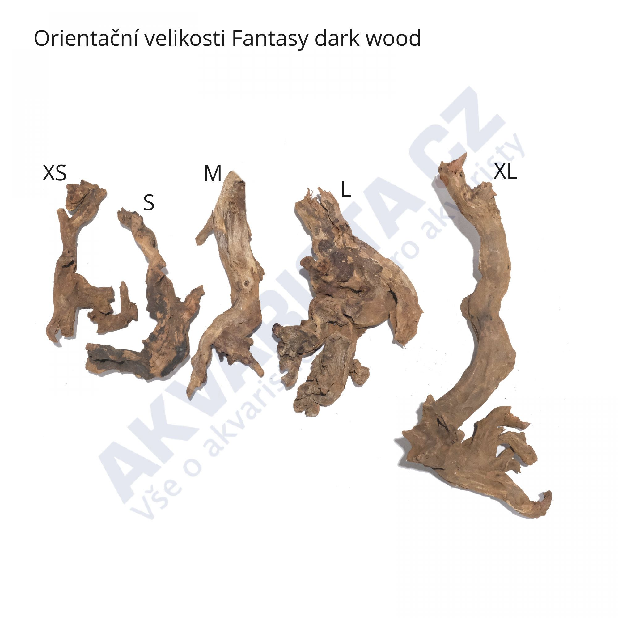 Fantasy dark wood S