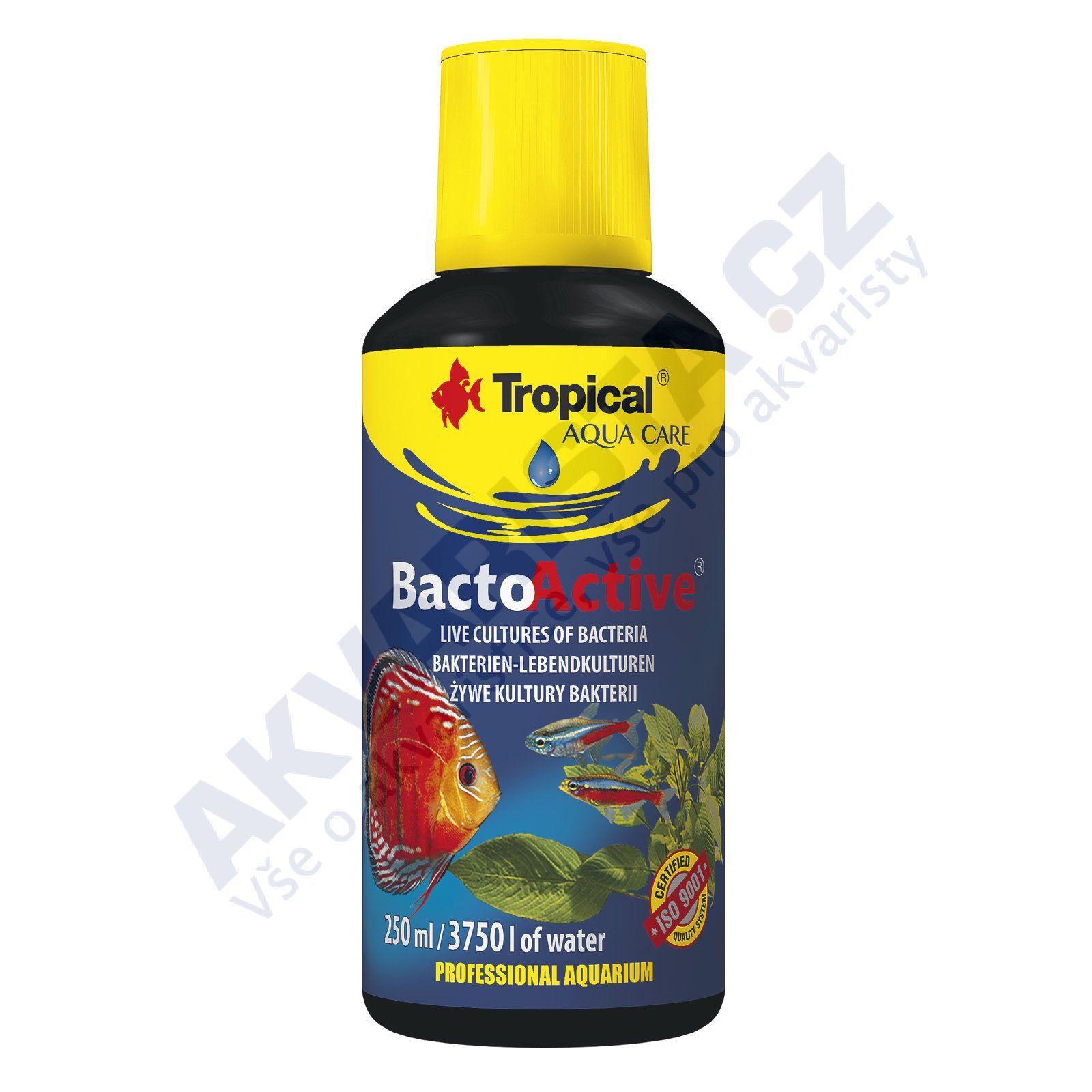 Tropical Bacto Active 250 ml