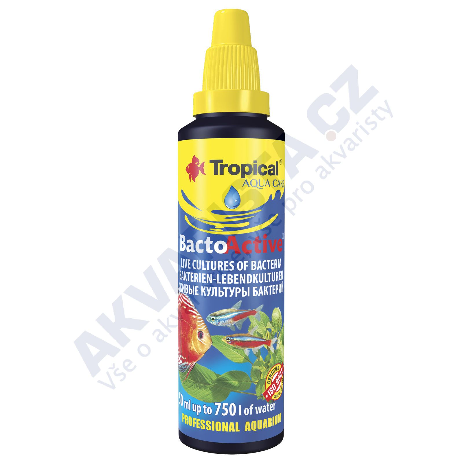 Tropical Bacto Active 30ml